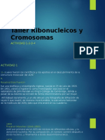 Taller Ribonucleicos y Cromosomas