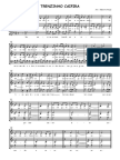 trenzinhocaipira.pdf