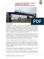 Diseño Del Puente Peatonal de La Av