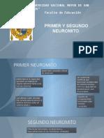 Primer Y Segundo Neuromito