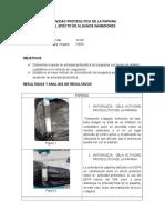Actividad Proteolitica de La Papaina 3 Informe