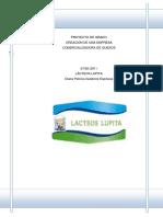 proyecto de un empresa.pdf