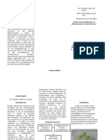 Triptico FPS (1)