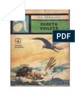 Ion Ochinciuc-Egreta Violeta