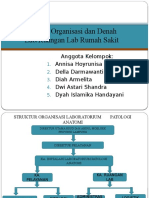 Struktur Organisasi Dan Denah Lab