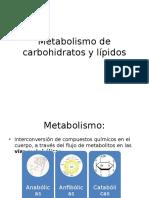 Metabolismo de carbohidratos 1.pptx