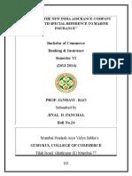 Jinal Panchal Project
