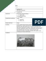 Deskripsi Batuan Beku Granit