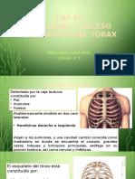 CAP 62, 63 y 64 de Anatomia Del Torax Cirugia