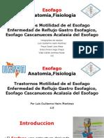 Cap- 70,71,72,73 y 74 Cirugia Enfermedad de ERGE Esofago Cascanueces Tratamiento