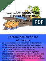 Contaminacion de Los Alimentos 1