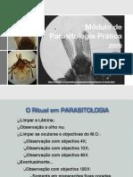 Protozoarios_Parasito