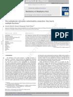 Endoplasmic Reticulum - Mitochondria Connection