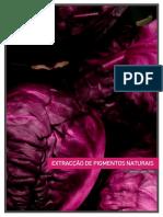 pigmentos1ano.pdf