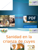 Expo Cuyes Sanidad