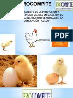 Expo Pollitos Bb