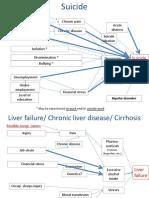 Punnett et al Causal Maps_Diseases of Distress