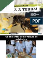 vter6cdrd_ppt1.pptx