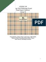 aeshm 340 burberry final report