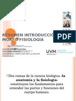Introduccion a La Morfofisiologia
