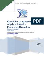 6128987-Ejercicios-y-examenes-de-Algebra-Lineal.pdf