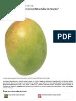 ¿Cuántos Días Tardan en Crecer Las Semillas de Mango_ _ EHow en Español