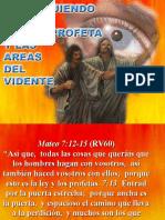 05 Distinguiendo Al Pseudo Profeta y Las Areas Del Videntel