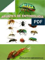 Apuntes de Entomología