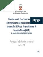 Flujo_EIA_PIP.pdf
