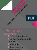 HEMOSTASIA SECUNDARIA.pptx