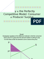 Producer and Consumer Surplus_students Copy