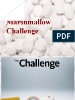 Mashmellow Challange Final