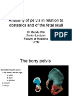 070710 - Anatomy of Pelvis and Fetal Skull