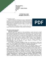 Curs de Estetica Universitatea Din Craiova - Partea 1