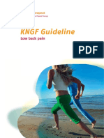 Low Back Pain Practice Guidelines 2013