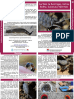 INTA Diptico Control de Insectos en La Huerta