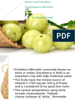 Production and Cultivation of Amla(Embelica officinalis).pptx