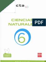Conecta 3.0 Ciencias 6