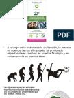 297679587-Obesidad-e-Inflamacio-nPP-pptx.pptx
