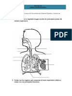 4. TP -Sistema Cardio-Respiratorio