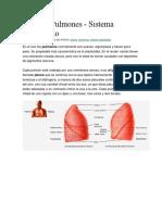 Pleura Respiratorio 1 Bibliografia