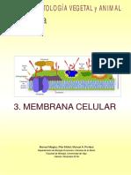 atlas historia vegetal.pdf