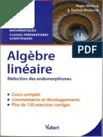 Algebre Lineaire - Reduction Des Endomorphismes
