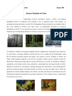 Bioma Bosque Templado de China