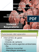 Fisiologiadelaparatorespiratorio 150423232158 Conversion Gate02