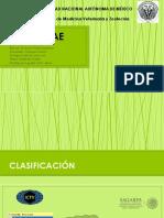 Reoviridae final.pdf