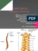 Columna Cervical ElMeroBueno