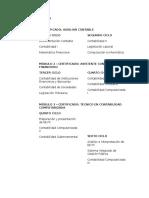 Plan de Estudios Contabilidad Computarizada