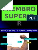 Miembro Superior.pptx