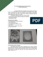 Ketikan Radiologi Sinus